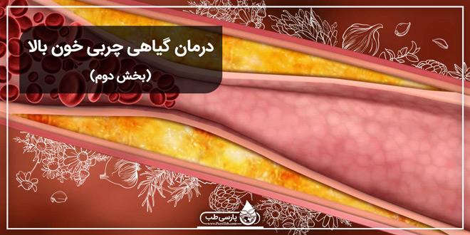 درمان گیاهی چربی خون بالا (بخش دوم)